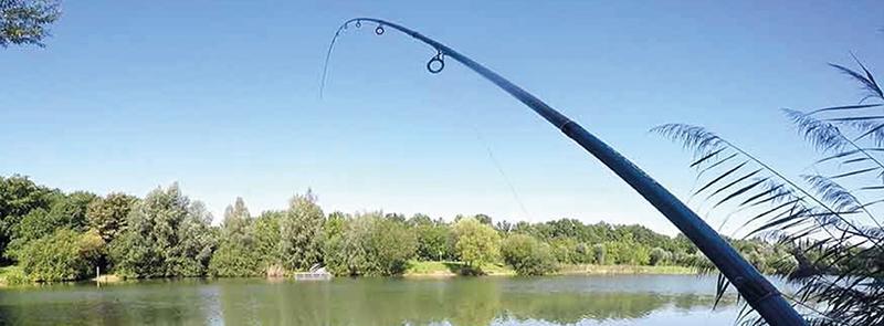 vissen Dilsen-Stokkem